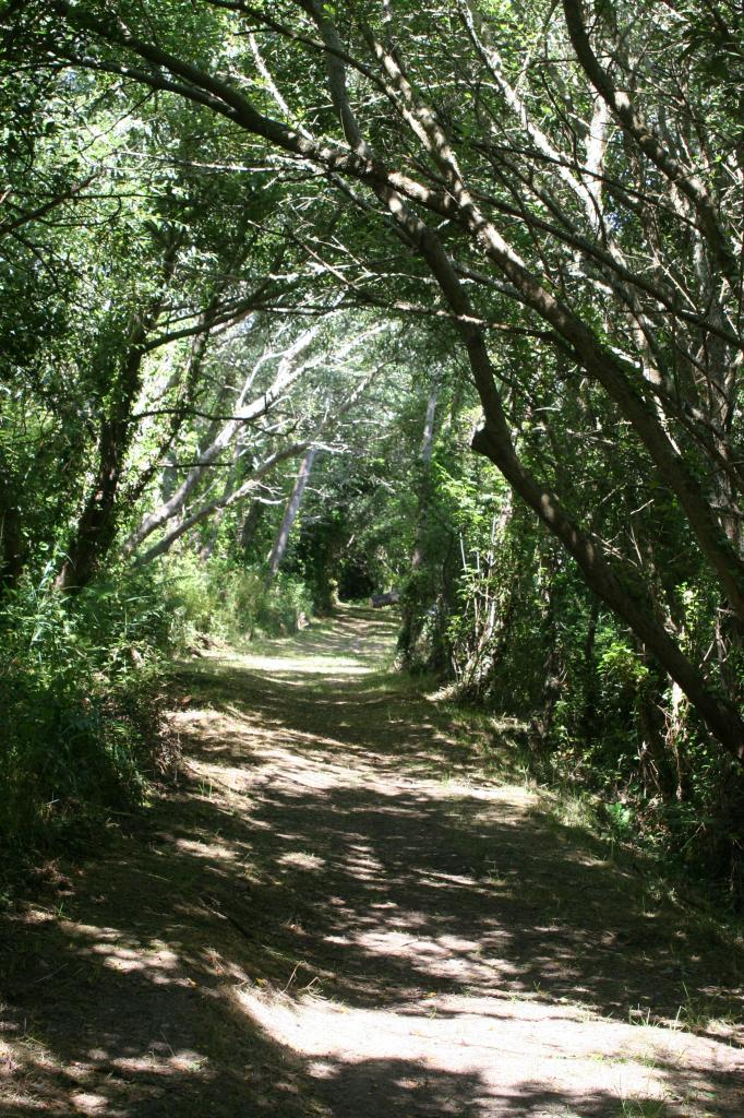 Petit chemin vers plage du Veryach