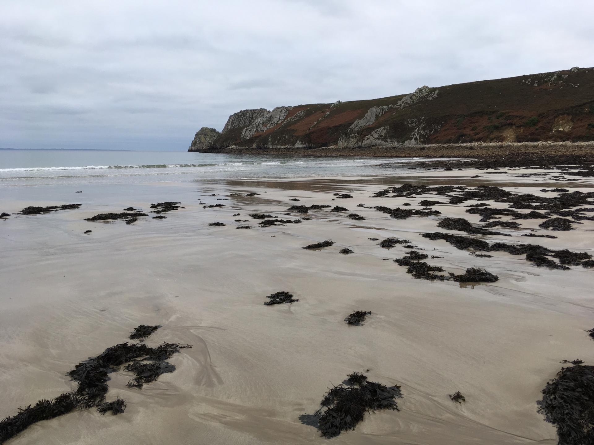 Veryach à marée basse